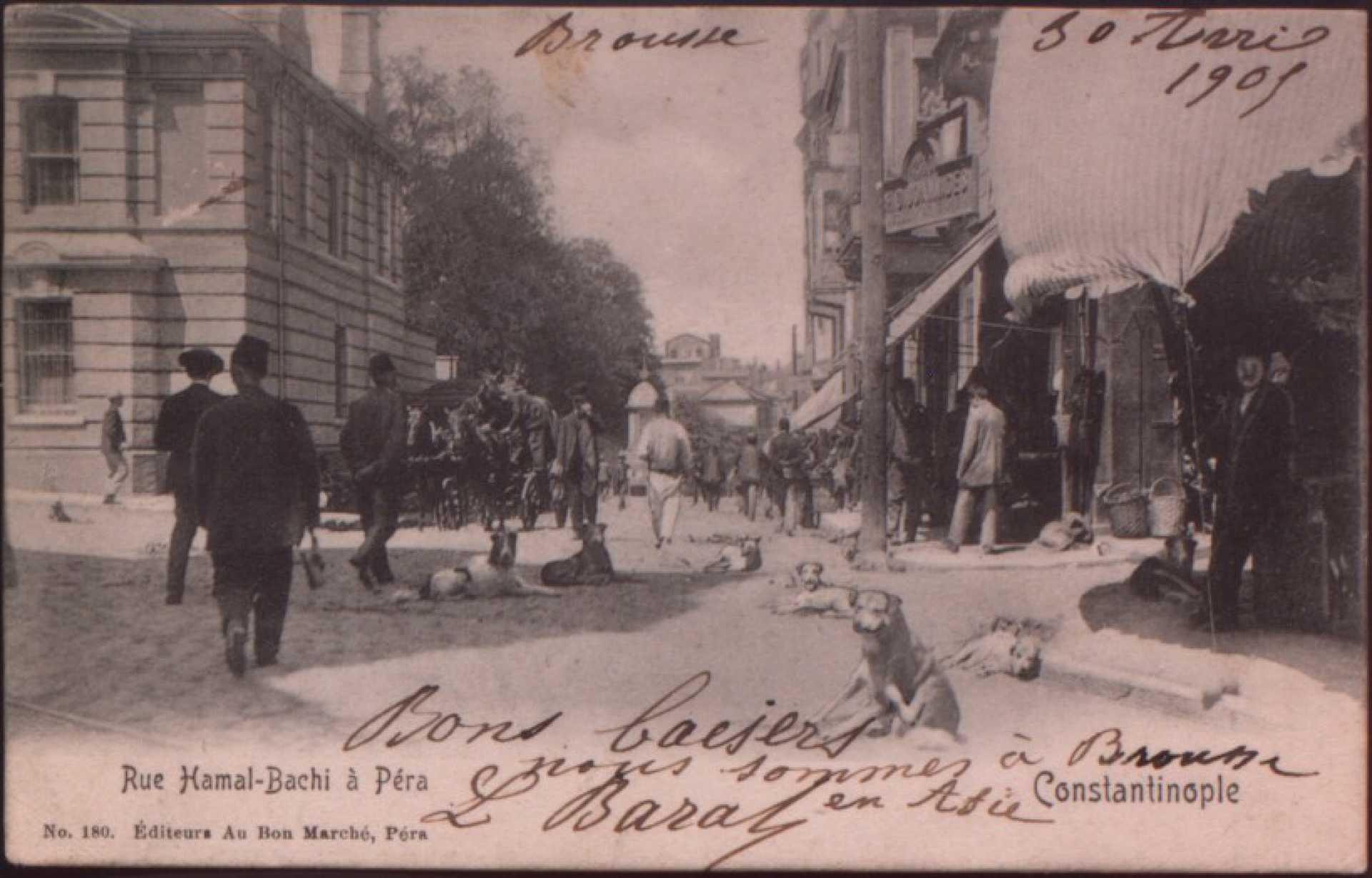 Rue Hamal – Bachi a Pera
