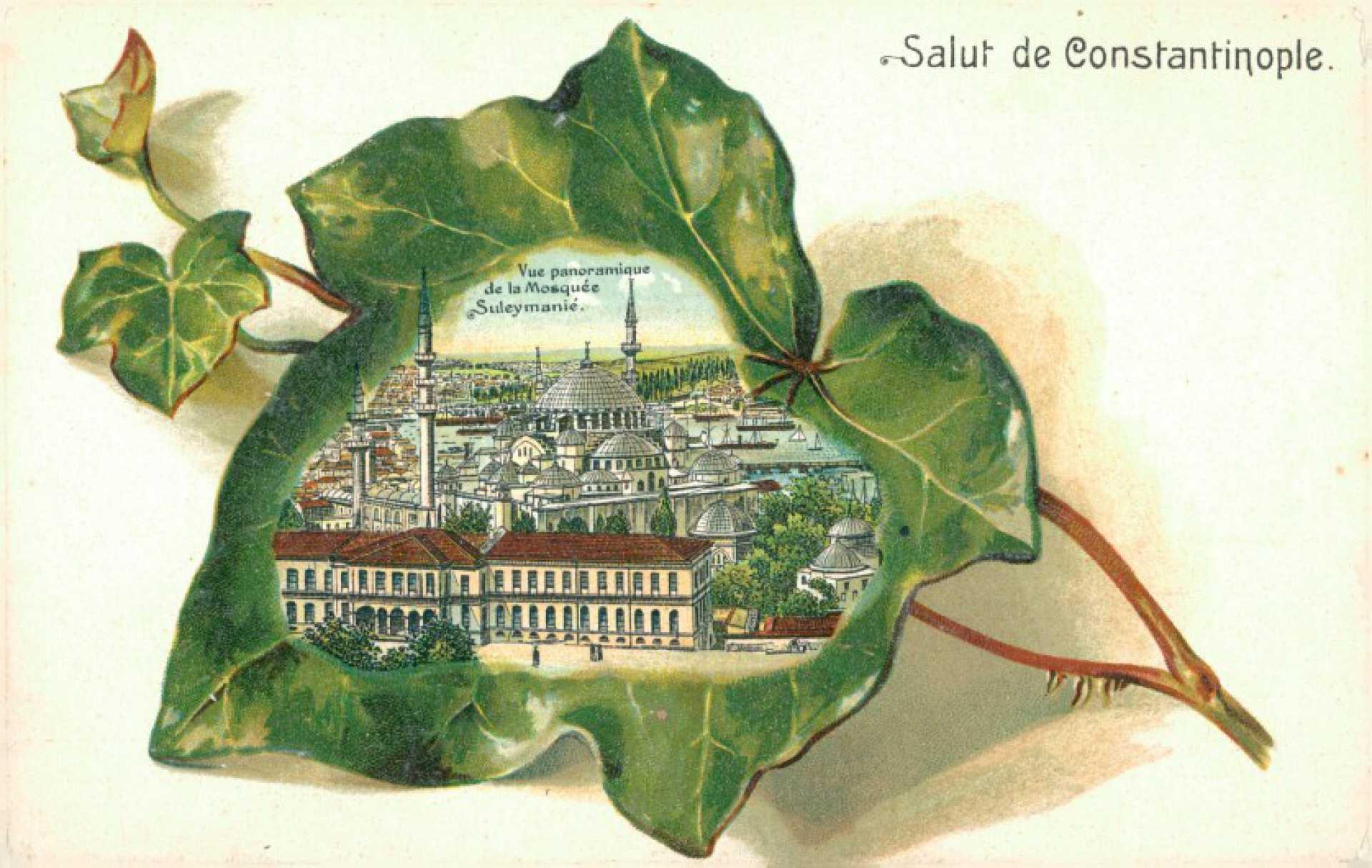 Vue panoramigue de la Mosquee Suleymanie